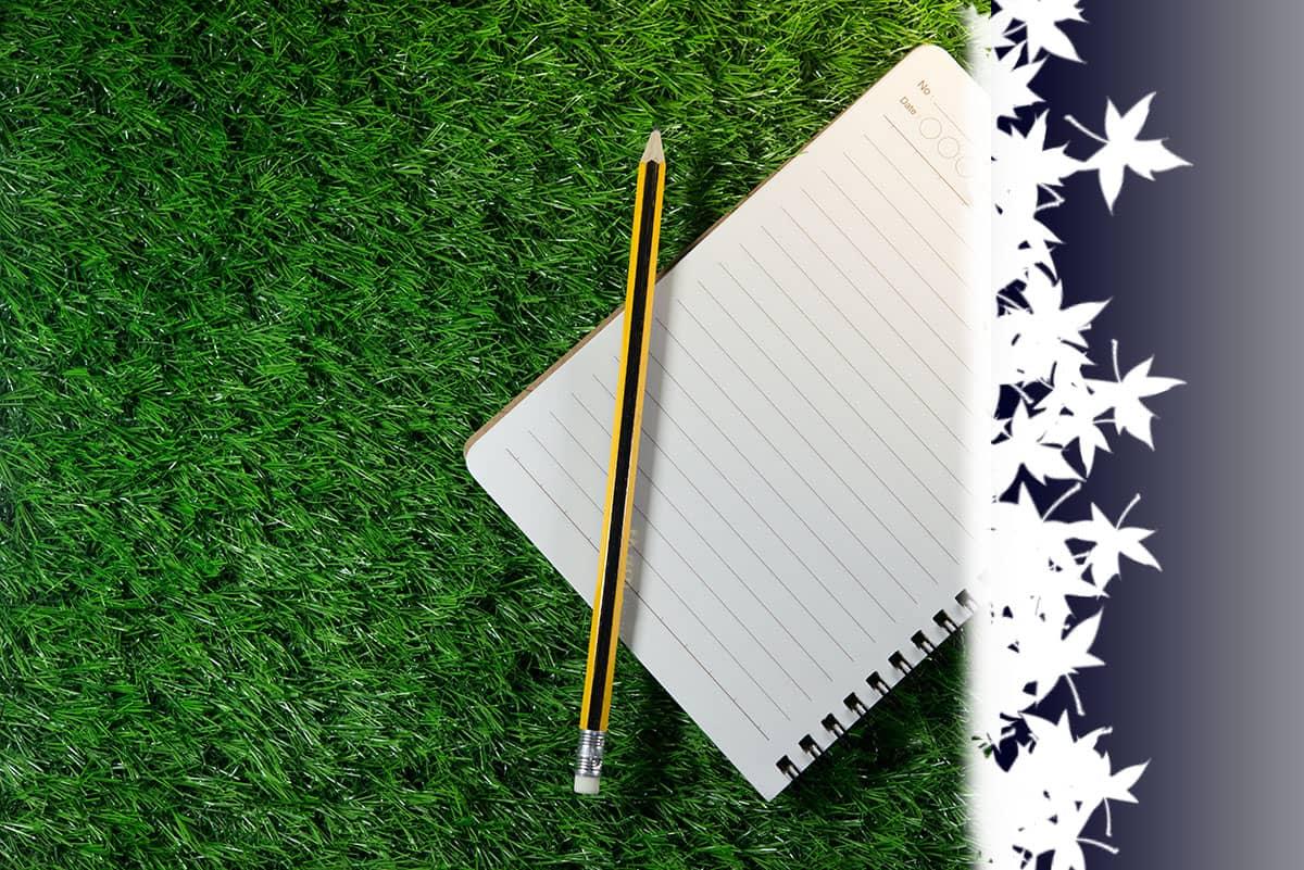 ideas artificial grass
