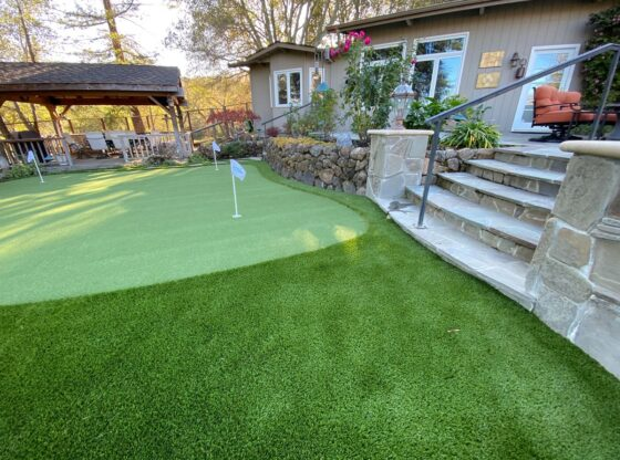 Outdoor Stairs with Synthetic Putting Green