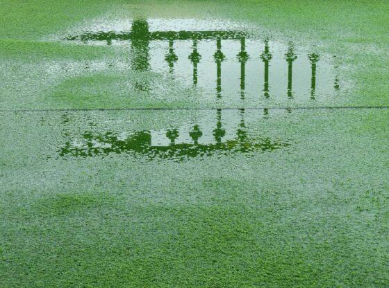 artificial grass flood