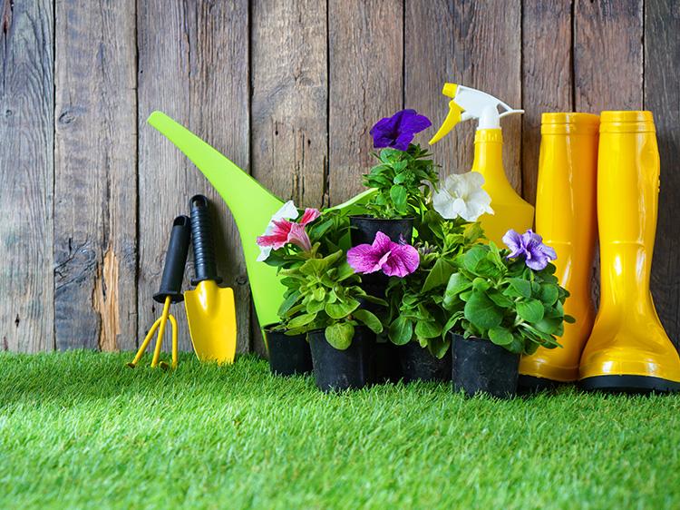 artificial grass care tips