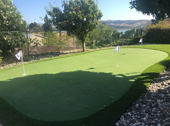 Synthetic Grass putting green golf game
