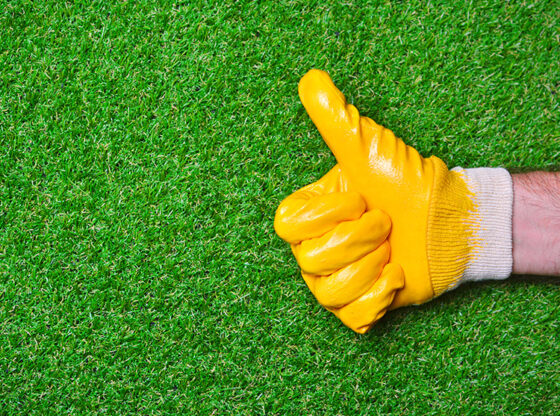 Durable Qualities of Artificial Grass
