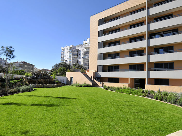 apartment with artificial grass